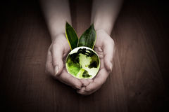 Glass globe in hand Stock Photos