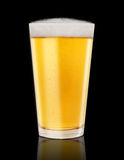 Glass of Golden Beer on Black Stock Photography