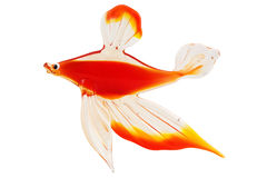 Glass golden carp isolated on Stock Photo