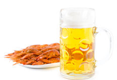 Glass of beer with a seafood platter Stock Image