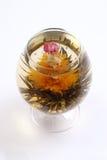 glass grön tea för blomma royaltyfria foton
