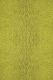 glass grön textur Arkivbilder