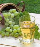 Glass of Grape Juice Royalty Free Stock Photography