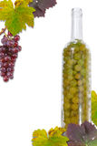 Glass grapes Stock Photo