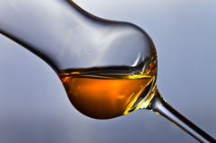 Glass of grappa. On a dark background Royalty Free Stock Photos