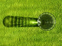 Glass on green Royalty Free Stock Image