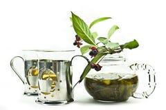 glass green låter vara teateapoten Arkivbild