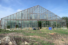 Glass greenhouse Stock Photos