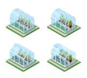 Glass Greenhouse Isometric Set Royalty Free Stock Photography
