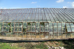 Glass greenhouse Royalty Free Stock Photos