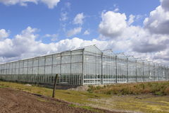 Glass Greenhouses Royalty Free Stock Photo