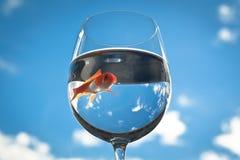 glass guldfisk Arkivfoto