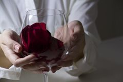 Glass in the hands of a woman stock photos