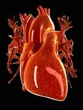 A glass heart Stock Photography