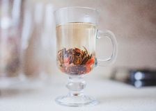 A glass of herbal tea. On the table Royalty Free Stock Photos