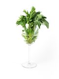 Glass of herbs Royalty Free Stock Image