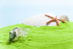 Glass hermit crab along the green beach Stock Photo