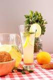 Glass of homemade lemonade Stock Images