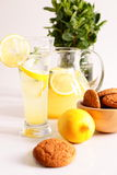 Glass of homemade lemonade Royalty Free Stock Photo