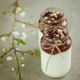 Glass of Homemade yoghurt with chocolate mousse and  chocolate c Stock Image