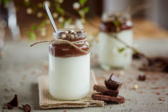 Glass of homemade yoghurt with chocolate mousse and  chocolate c Stock Photo