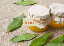 A glass of honey and bay leaves Royalty Free Stock Image