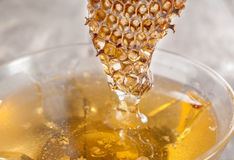 Glass honey pot and honey comb Royalty Free Stock Photo