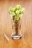 Glass with hop and wheat. Stock Photography
