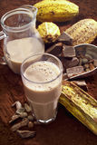 Glass of hot chocolate, cocoa beans, cocoa powder and cocoa fruits Stock Photography
