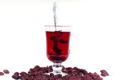 A glass of hot Uzvara of rose hips and berries scattered around. Effective methods to combat colds and flu. Royalty Free Stock Images