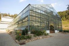 Glass house plantation Royalty Free Stock Photos