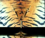 glass hudtiger Royaltyfri Foto
