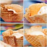 glass i en dillandebunke Royaltyfri Foto