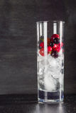 Glass of ice with berry gooseberries red black currants and water. Refreshing cocktail. Summer drink. Royalty Free Stock Photos