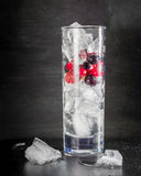 Glass of ice with berry gooseberries red black currants and water. Refreshing cocktail. Summer drink. Stock Image