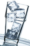 Glass with ice cubes Royalty Free Stock Images