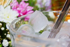 Glass of Ice Cubes Stock Photos