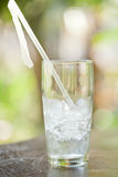 Glass of ice cubes with a straw. A glass of ice cubes with a straw against a natural sunlit background Royalty Free Stock Photography