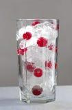 glass ismix för cranberry royaltyfri fotografi