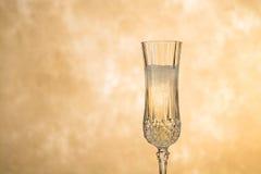 glass isoleringswhite för champagne Arkivbild