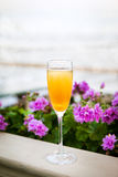 Glass of italian Bellini alcoholic cocktail. With peach on the evening beach stock photo