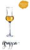 Glass of Italian grappa brandy Royalty Free Stock Photography