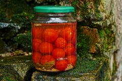 Glass jar with canned tomatoes on bricks in green moss Royalty Free Stock Photos