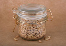 Glass jar of cedar nuts Royalty Free Stock Photography