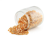Glass jar with corn grain. On white background Stock Images