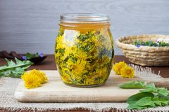 A glass jar filled with dandelion flowers and honey. To prepare homemade herbal syrup Royalty Free Stock Photos