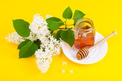 Glass jar with floral aromatic honey. Studio Photo stock image