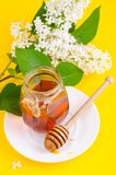 Glass jar with floral aromatic honey. Studio Photo royalty free stock photos