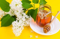 Glass jar with floral aromatic honey. Studio Photo royalty free stock photography