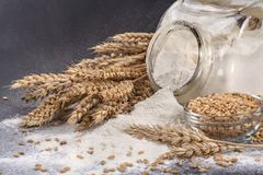 A glass jar with flour Royalty Free Stock Images